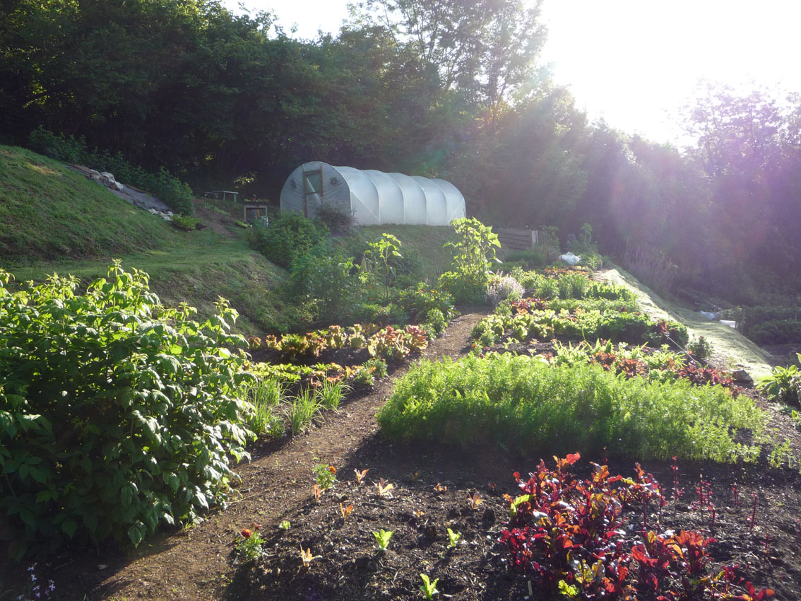Permaculture courses permaculture principles on a for Small permaculture garden designs