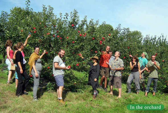 orchard permaculture design course